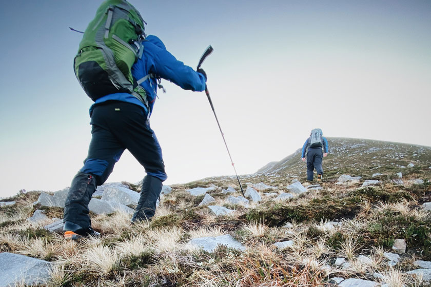 Trekking poles for walking
