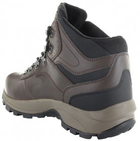 Mens Altitude VI Waterproof Hiking Boot