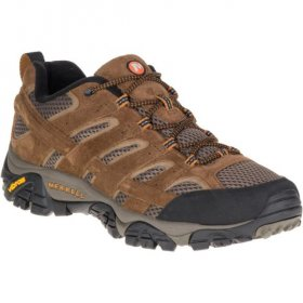 Mens Moab II Ventilator Shoe - Earth